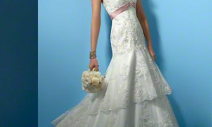 21 Elegant Alfred Angelo Plus Size Wedding Dresses