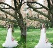 Cherry Blossom Wedding Dresses Fresh Monique Lhuillier Promise Cherry Blossom Stylized Shoot