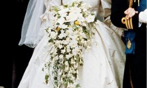 23 Beautiful David Emanuel Wedding Dresses
