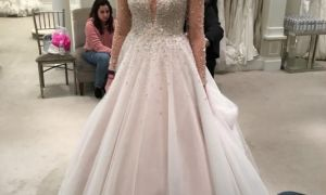 22 Fresh Dennis Basso Wedding Dresses