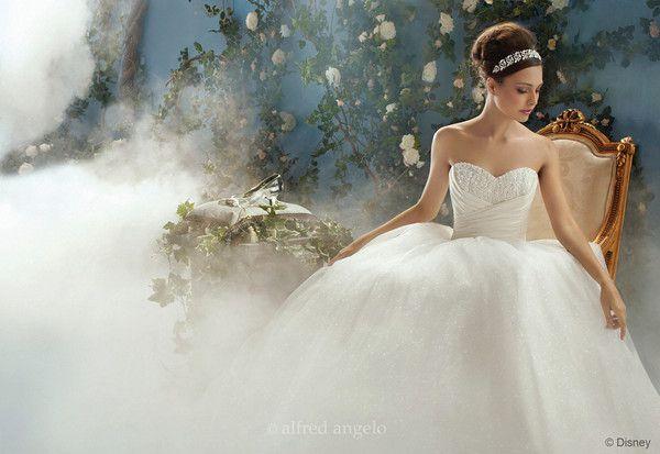 cinderella wedding gown 56a4be235f9b58b7d0d8aa65