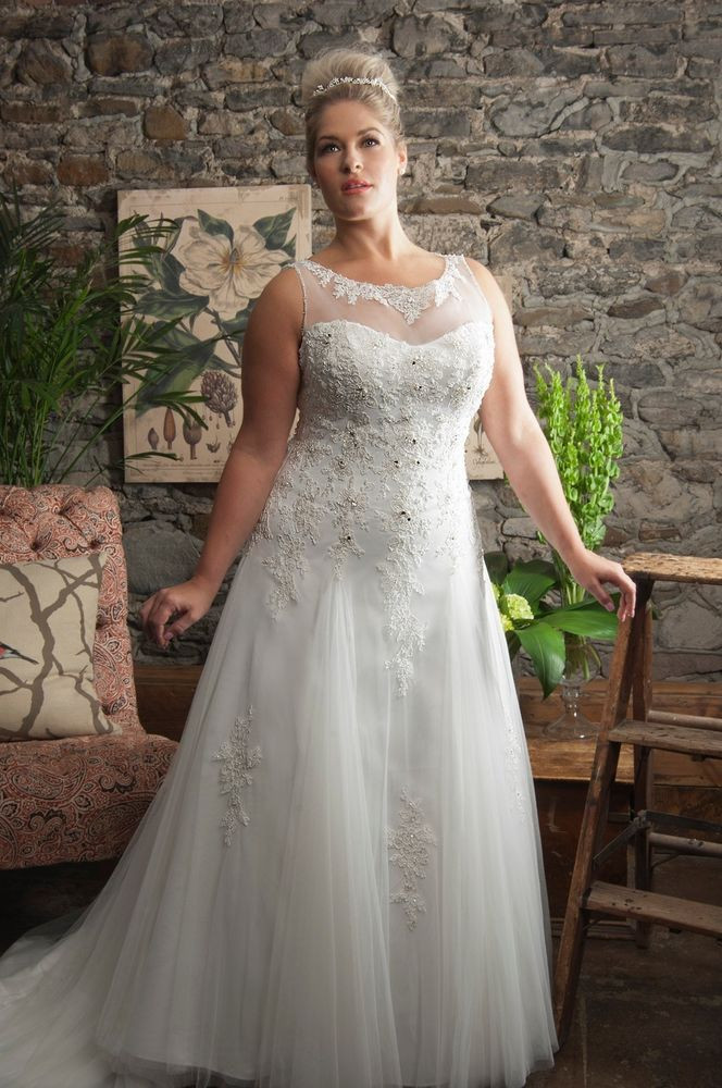 pictures of plus size wedding dresses plan women s plus size wedding guest dresses fresh 75 best american girl of pictures of plus size wedding dresses