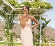 Nature Wedding Dress Unique Bridesmaid Dresses & Wedding Dresses