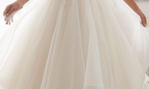 25 Fresh organza Wedding Dress