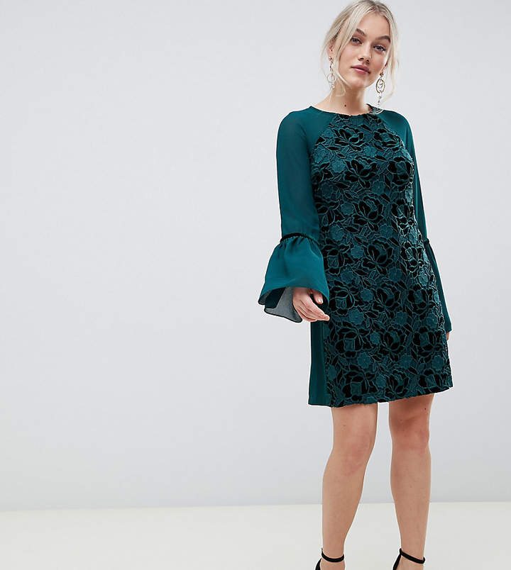 Paper Dolls Petite velvet lace shift dress with sheer sleeve in emerald
