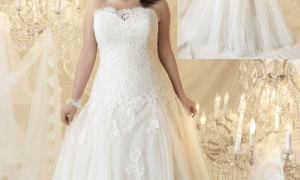 27 Luxury Plus Size Wedding Dresses with Color