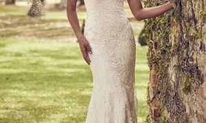 22 New Sears Wedding Dresses Plus Size