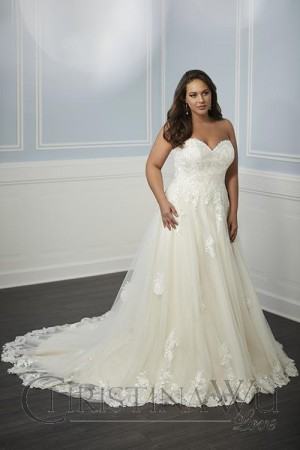 Used Plus Size Wedding Dresses Awesome Christina Wu Love Wedding Dresses