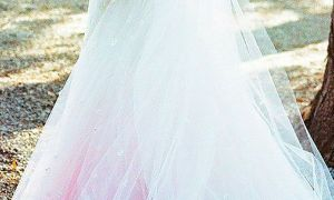 21 Beautiful Wedding Dresses and Veil
