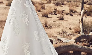 24 Elegant Wedding Dresses Tucson
