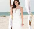 Wedding Short Dresses Awesome Poly Usa Style 7656 Short Dress Destination Wedding